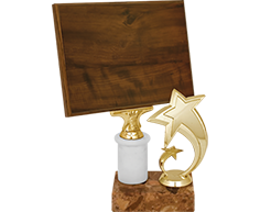 Награда-планшет 2758-300-079